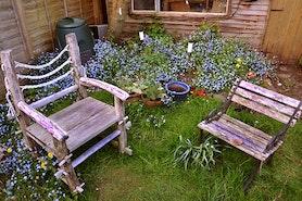 Mały ogród - sposoby na aranżację