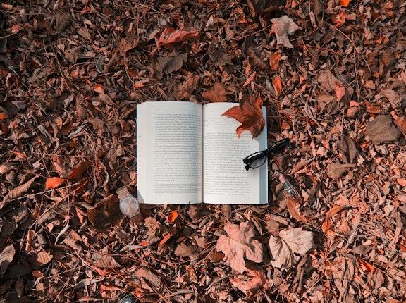 Jesienne promocje książkowe, którym się nie oprzesz
